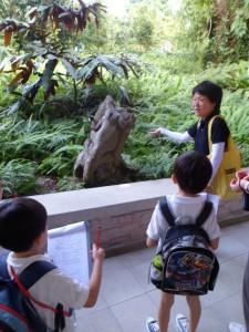 TreesandMe-06